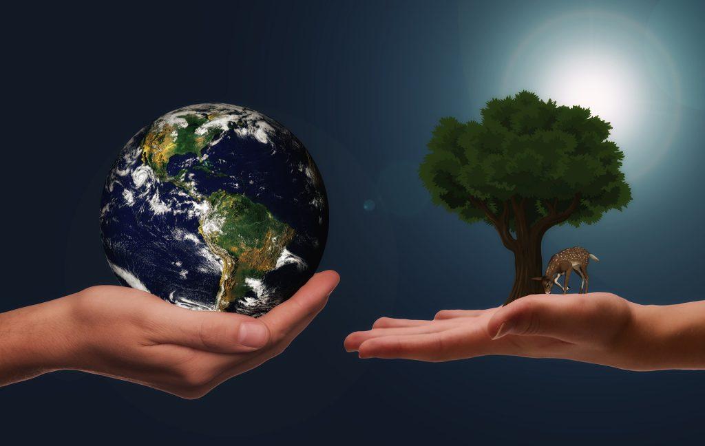 costo più alto, ma eco-sostenibile